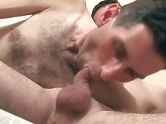 Horny Bears Warm Each Other Up 1