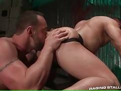 Turned on dude hungrily swallows partner`s thick boner.