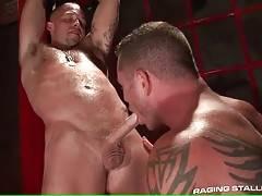 Charlie Sucks Caleb`s Cock And Licks Ass 1