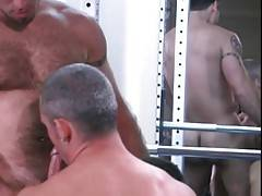 Muscled bear enjoys the taste of friend`s erect cock on his Birthday.