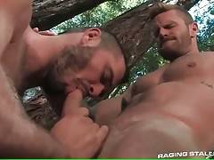 Hot Toned Studs Are Fucking In Forest 2