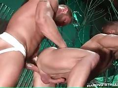 Big hairy bull works his cock inside buddy`s welcome butt.